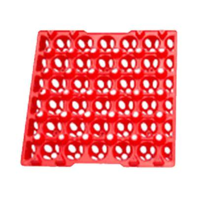 Egg Tray Plastik - Small (ETP)