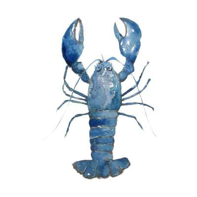 Lobster Hias Air Tawar Blue Lobster