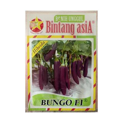 Benih Terong Bungo F1 (Small Pouch)