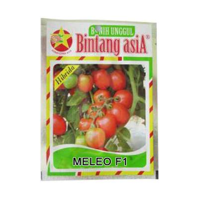 Bibit Tomat Maleo F1 (Regular)